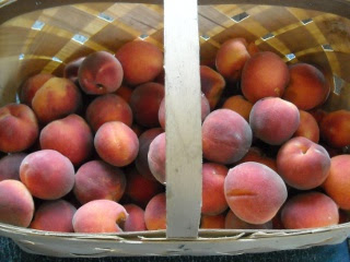 Harvested Peaches in Basket