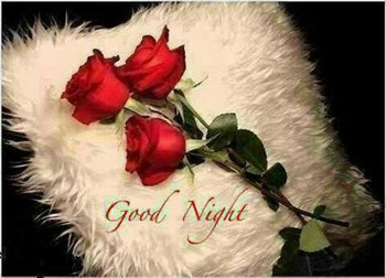 good night my love sweet dream