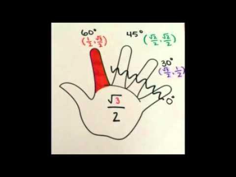 Memorizing The Unit Circle Using Left Hand Trick Youtube