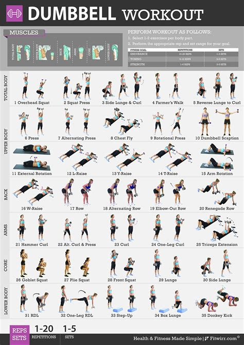 fitwirr womens poster  dumbbell exercises