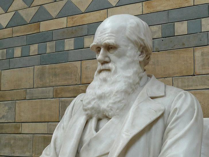 charles darwin estatua