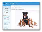 Devonhound Bassets