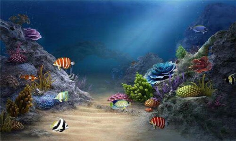 4 Exactly Living 3d Aquarium Live Wallpaper Hd Apk Download