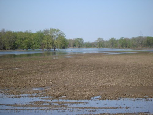 Picture of Wet Fields at Riverside