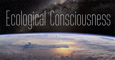 The Evolution of Ecological Consciousness (2013)