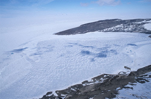 Los extremófilos: Vida que se encuentran en el lago subglacial antártico