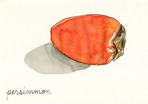 sketch11.26.11_persimmon