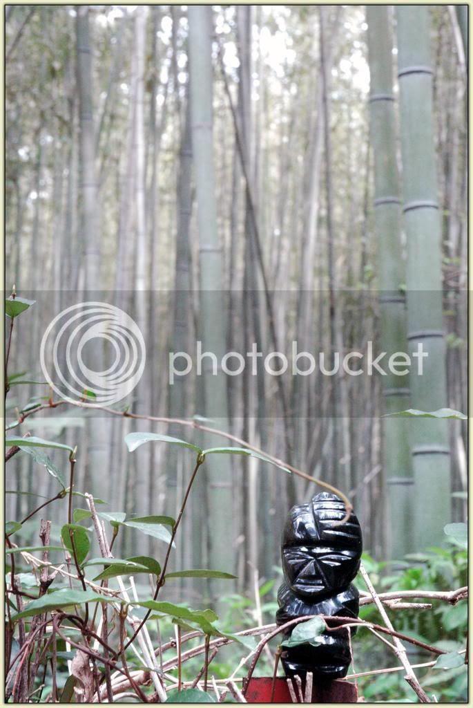 Storyteller Arashiyama