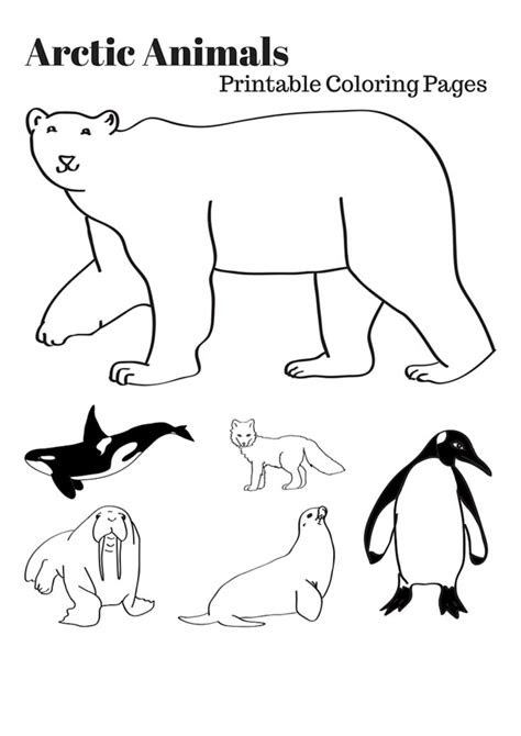 arctic animals ideas  pinterest kindergarten