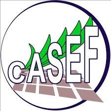 AO1D67037C - CASEF : Consultant Individuel - Responsable de communication