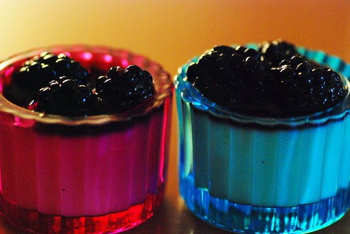 blackberry-yogurt-pannacotta1