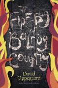 http://www.barnesandnoble.com/w/the-firebug-of-balrog-county-david-oppegaard/1121090590?ean=9780738745435