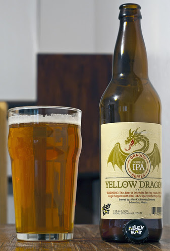 Alley Kat Yellow Dragon Double IPA 10/24 by Cody La Bière