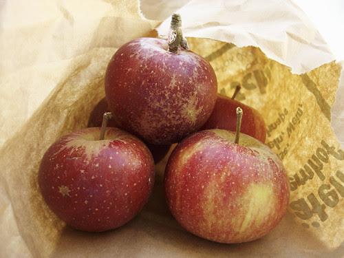 Äpfel vom Märt — Cox d'Orange