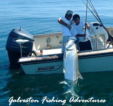 galveston fishinggalveston offshore fishingdeep fishing ForDeep Sea Fishing Houston