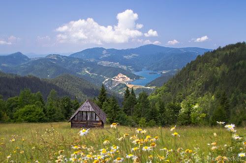 Zaovine Lake / Заовинско језеро  / Tara National Park / Serbia