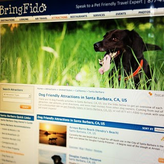 Day190 planning out of vacation in California with our dogs!  Using Bringfido.com 7.9.13 #jessie365