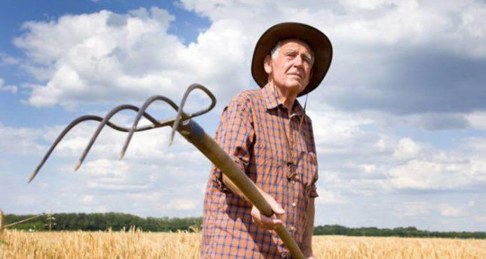 Αραχωβίτης: Aπό 504 ευρώ θα ξεκινούν πλέον οι συντάξεις για τους αγρότες