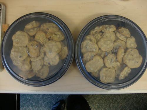 cookies ahoy