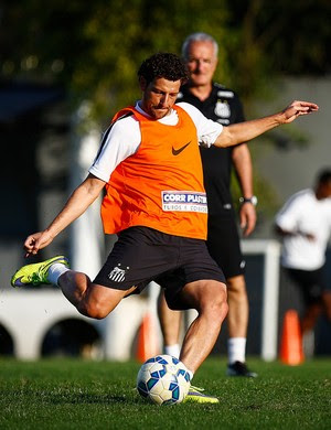 Elano; Santos (Foto: Ricardo Saibun/ Santos FC)