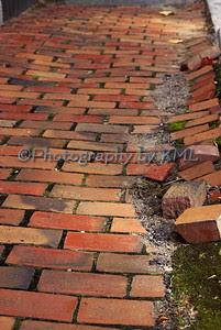 a brick sidewalk that needs repair