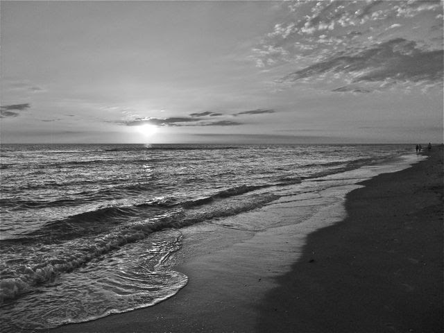 The Best Black And White Beach Photo