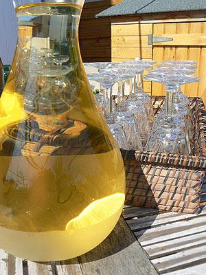 vin blanc sec.jpg