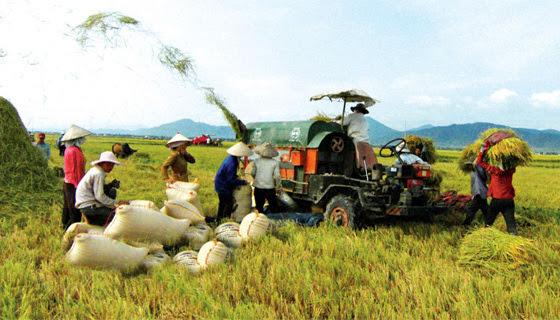 nông dân, nghèo, cú sốc, thu nhập, nông thôn, chi tiêu, nợ nần