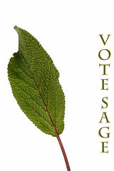 votesage© by Haalo