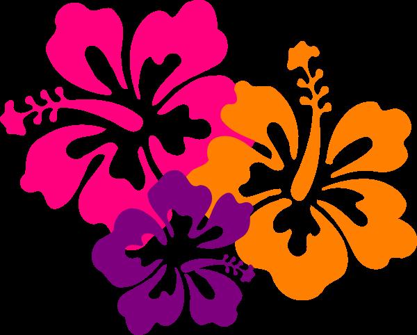 Flores Color Rosa Png