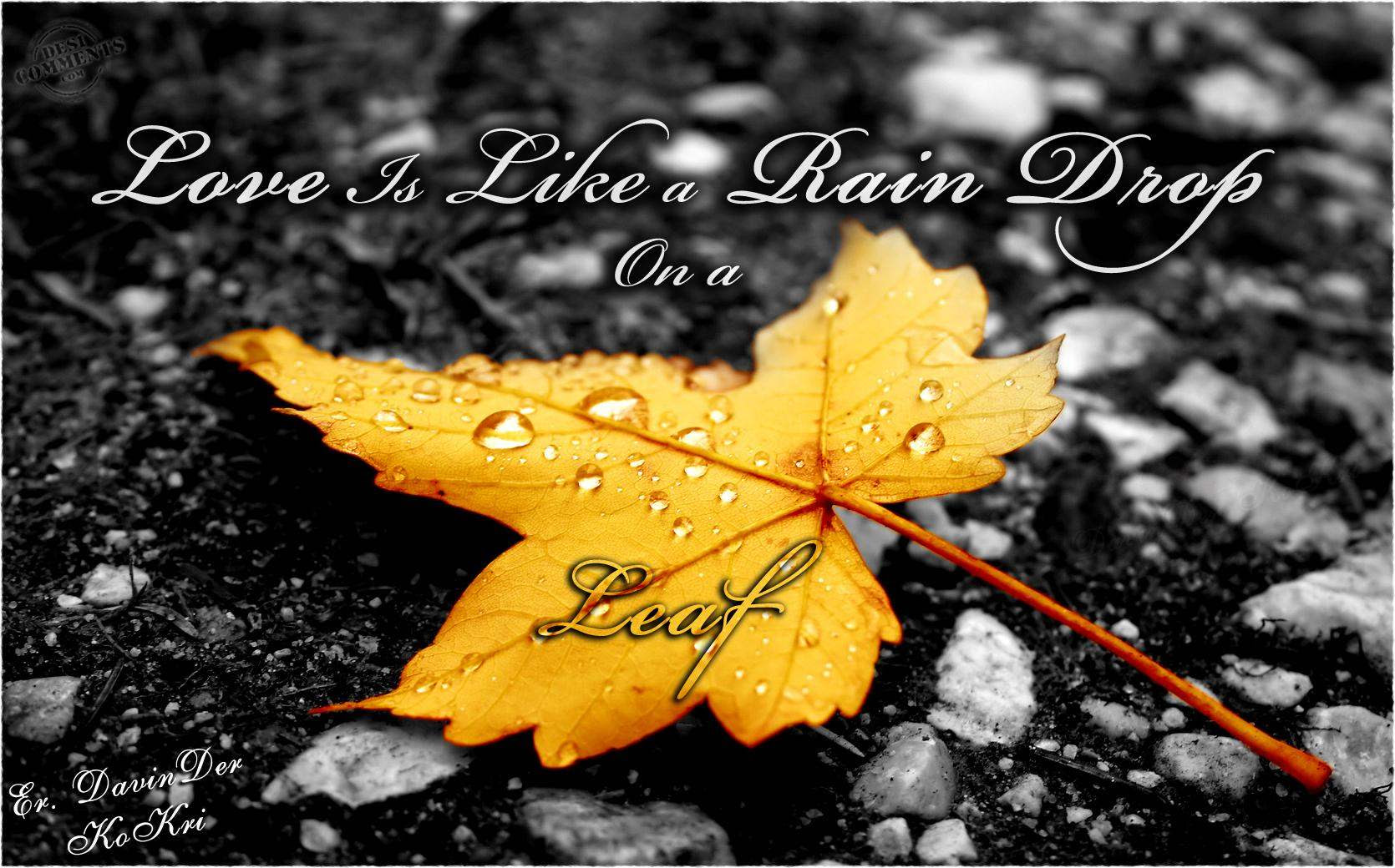 Czeshop Images Beautiful Rain Wallpaper With Quotes In Hindi