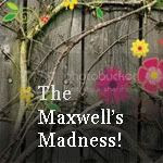 The Maxwell's Madness