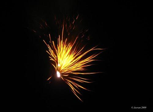 golden firework II