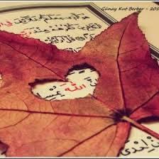 Sebepleri Yaratan Allah'tır