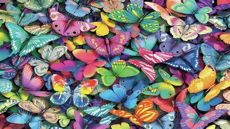 butterfly desktop backgrounds wallpapertag