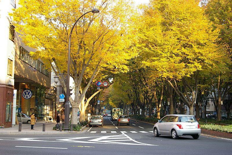File:JozenjiSt Nov24 2007.jpg