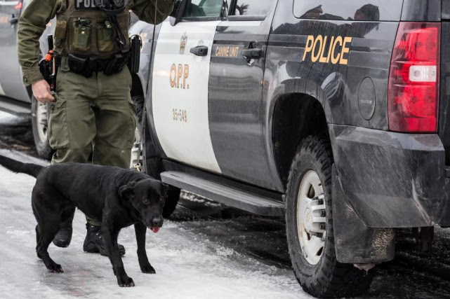 La police provinciale de l'Ontario dispose depuis 2002... (Photo Edouard Plante-Fréchette, La Presse)