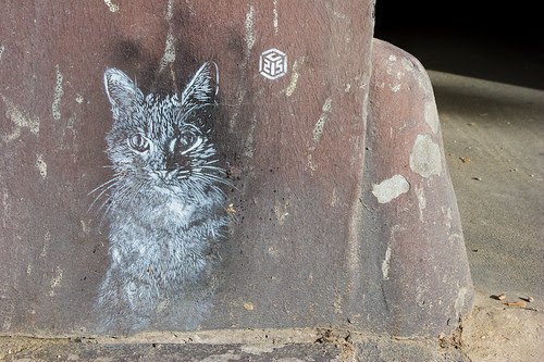 Les chats de C215 @ Paris - Cats by C215