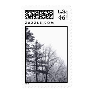 Snow-covered Trees: Vertical – Medium Postage Stamps