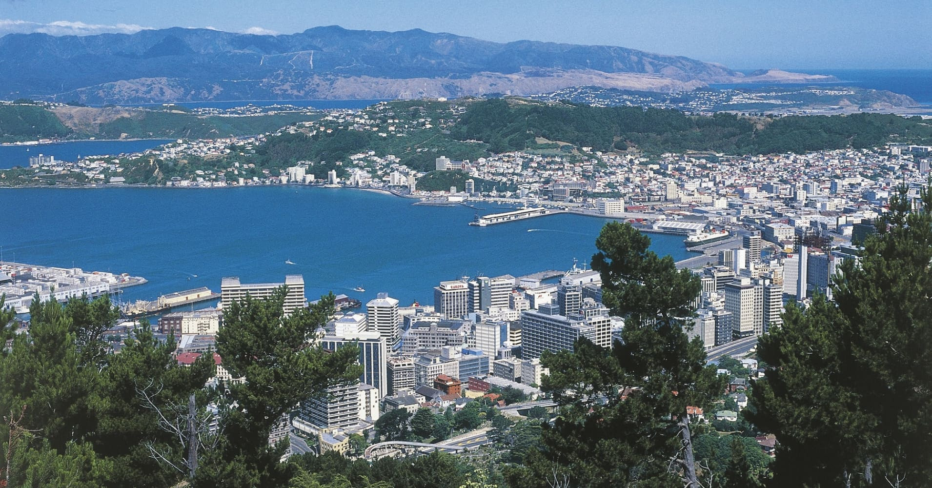 104313172 Wellington_NZ