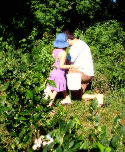 summer! berry pickin' together