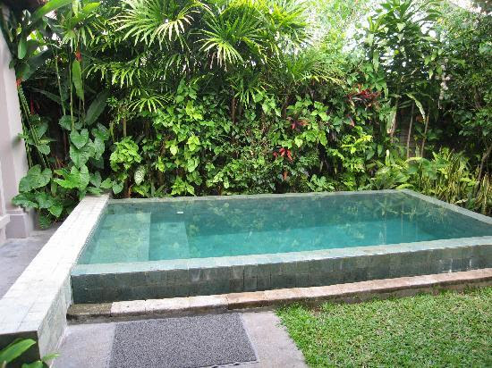 Small Pool Design Landscaping