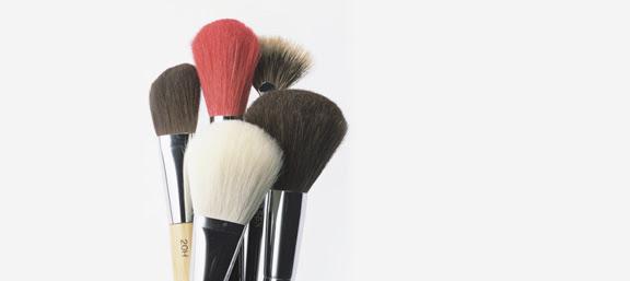 She makeup brushes