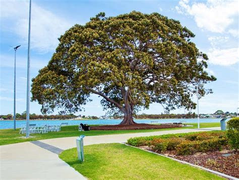 stingray point mandurah ceremony location wa weddings