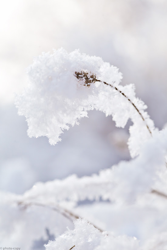 sneeuw-3