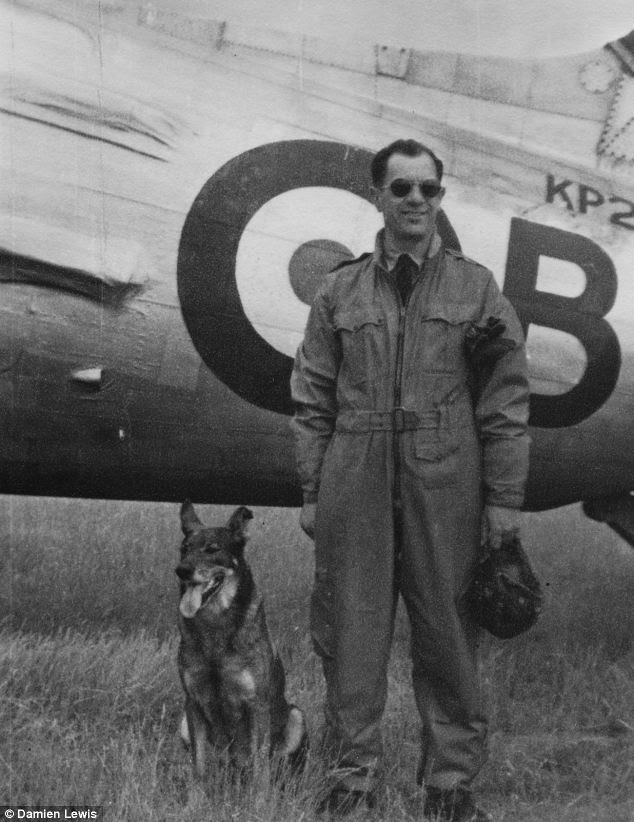 War dog: When gunner Robert Bozdech, right, crashed near a French farmhouse, the last thing he expected to find was the German shepherd Antis, left. But the two became inseparable, with Antis sneaking inside Robert's plane