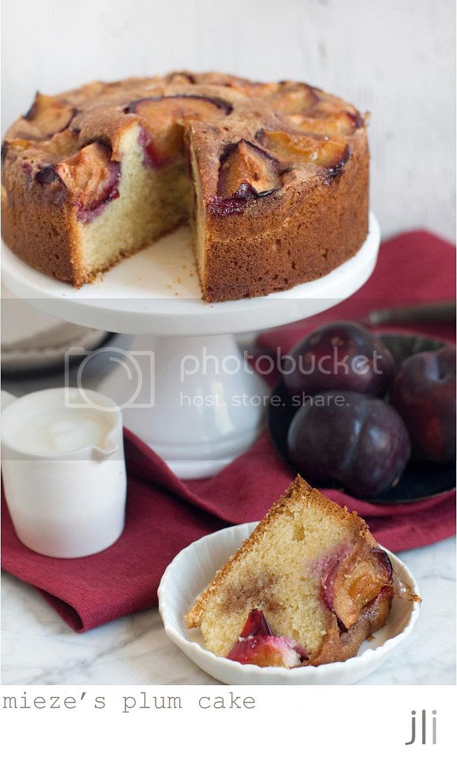 mieze's plum cake photo blog-4_zps4716d29b.jpg