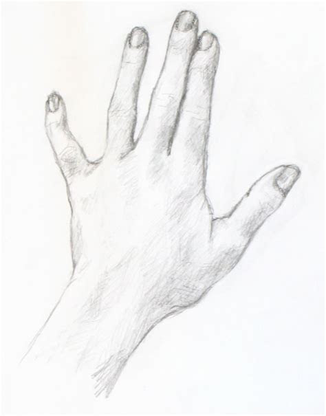 drawing painting tutorials portrait artist