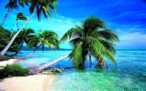 tropical beach screensavers wallpaper