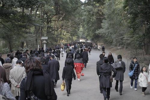 People heading to Meiji Shrine